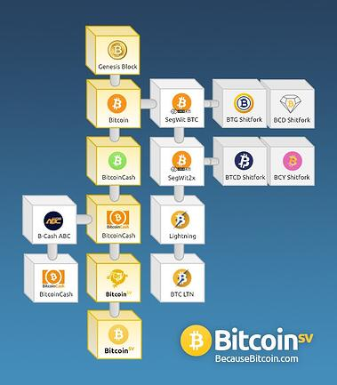 Bitstocks blog - Bitcoin Forks Image by BecauseBitcoin.com